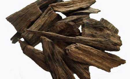 oud agarwood 450x276 - Oud Laos
