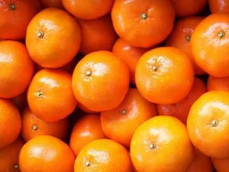 tangerine 1 450x338 - Tangerine